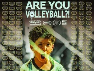 Are-you-volleyball