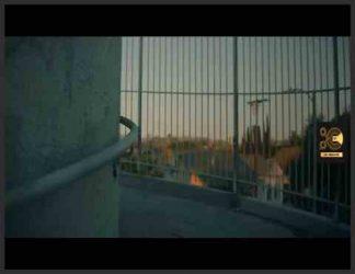 یک فیلمساز مستند ، خودکشی نگران کننده و غیرمنتظره یک نوجوان را بررسی می کند.