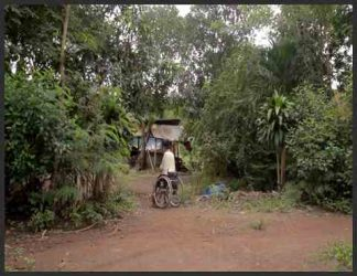مردی روی ویلچر در جنگل های ویتنام