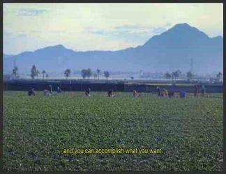 یک مزرعه سبز رنگ با کوه هایی در دور دست